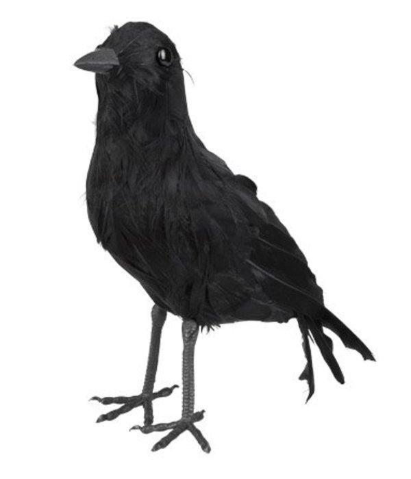 Decoratie Kraai zwart 23cm