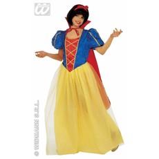 Sprookjesboek prinses kostuum