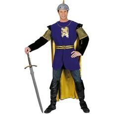 Royal Ridder Dragon kostuum