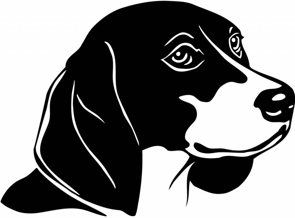 Beagel hondje