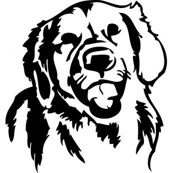Golden Retriever hondje
