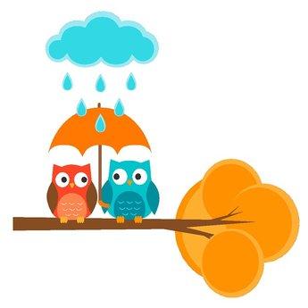2 uiltjes op tak in de regen full color muursticker