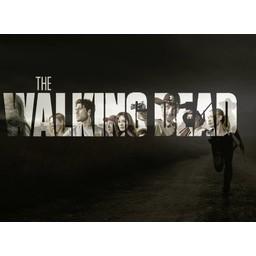 Walking Dead poster 2