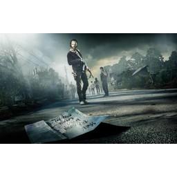 Walking Dead poster 5