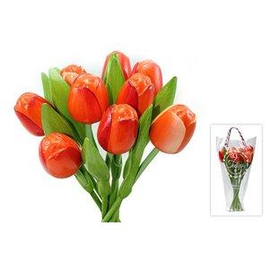 Typisch Hollands Houten Tulpen
