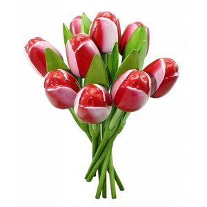 Typisch Hollands Hölzerne Tulpen