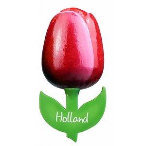 Typisch Hollands Magnet Tulip