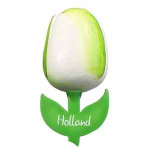 Typisch Hollands Magnet Tulip