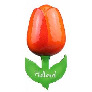 Typisch Hollands Magnet Tulip - Large