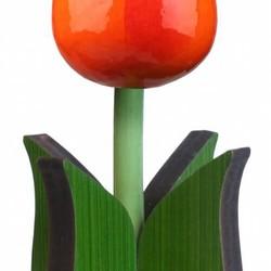 Stehende Tulpen
