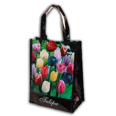 Typisch Hollands Gemengde Tulpenbollen in Geschenktas