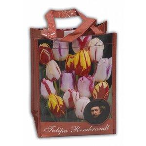 Typisch Hollands Shop Tulpenbollen Gemischte Tulpenzwiebeln in geschenktas
