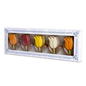 Typisch Hollands Chocolade Tulpen