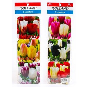 Typisch Hollands Coasters Tulips