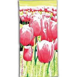 Tulip - Souvenirs