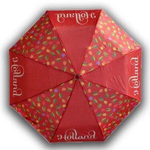 Typisch Hollands Umbrella Tulips Holland