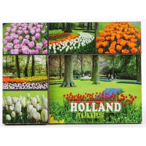 Typisch Hollands Magnet - Keukenhof - Tulpen