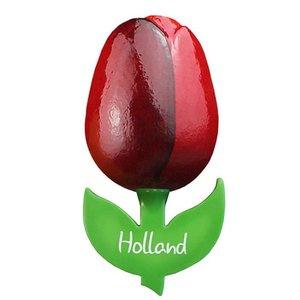 Typisch Hollands Großer Tulpe-Magnet