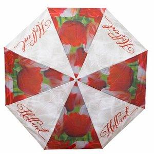 Typisch Hollands paraplu Holland tulpen compilatie