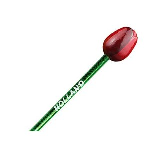Typisch Hollands Tulip Pencil