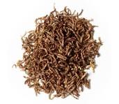 pallatrax dried naturals bloodworm
