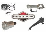 Briggs and Stratton Motor Onderdelen
