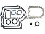 Pakkingset Briggs & Stratton IC Motoren 10 - 11 PK en Verticale Krukas op Zitmaaiers, Frontmaaiers, Tuintrekkers, Dichtingset B&S, Set Pakkingen voor B en S IC Motoren