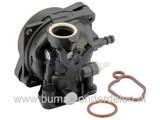 Carburateur voor Briggs & Stratton Motoren op Grasmaaier, Cirkelmaaier, Benzinemaaier, Vergasser B&S, Carburator voor B en S Motoren, Spirit 09p602-0029H