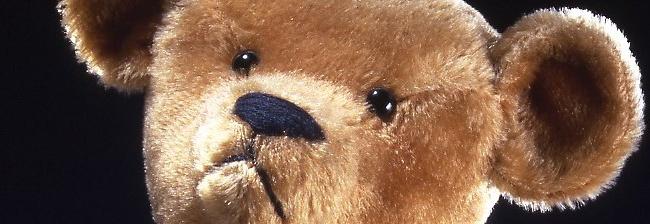 Waar komt de Teddybeer vandaan?
