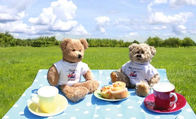 teddy bears picknick