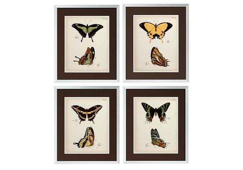 Eichholtz Butterfly prints