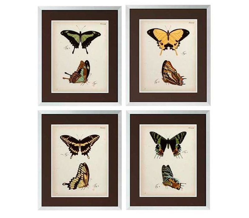 Butterfly prints framed - set of 4