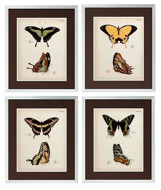 Wanddecoratie vlinder 6904922 - comotratarejaculacaoprecoce.info