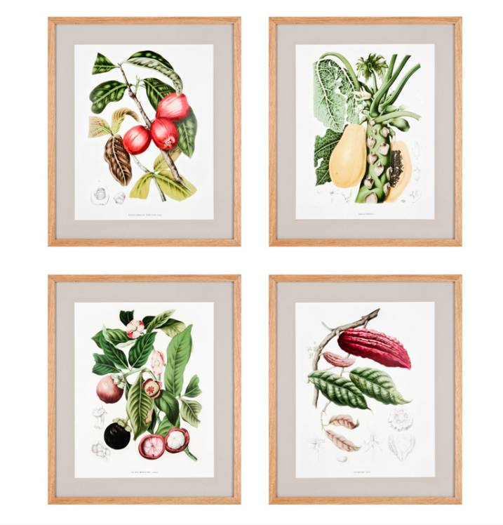Dekorative Drucke - Wilhelmina Designs