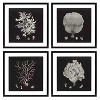 Coral prints ingelijst - set van 4