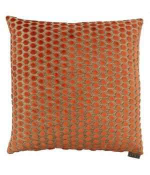 Claudi Zierkissen Sergio im Farbe Orange