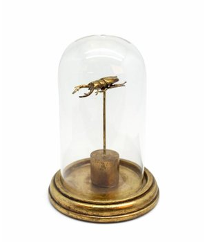 Dome Deco Statue insect polyresin
