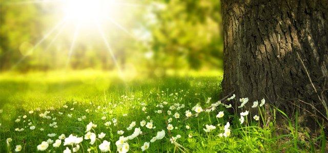 De lente is weer terug, eindelijk!