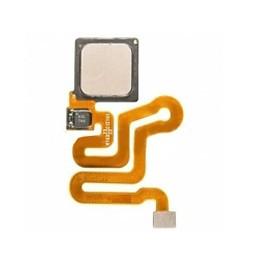 Home Flex Ascend P9 Lite