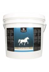 Synovium Synovium® Clay & Cool 5 kilo
