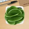 15% productiever met groen op kantoor