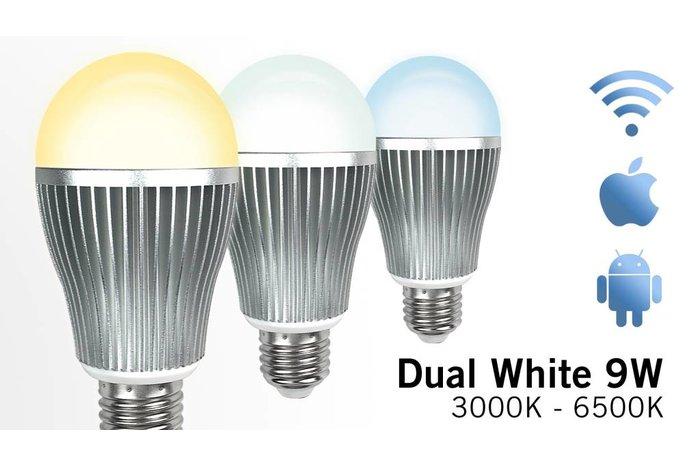 Dual White Wifi LED lamp 9W