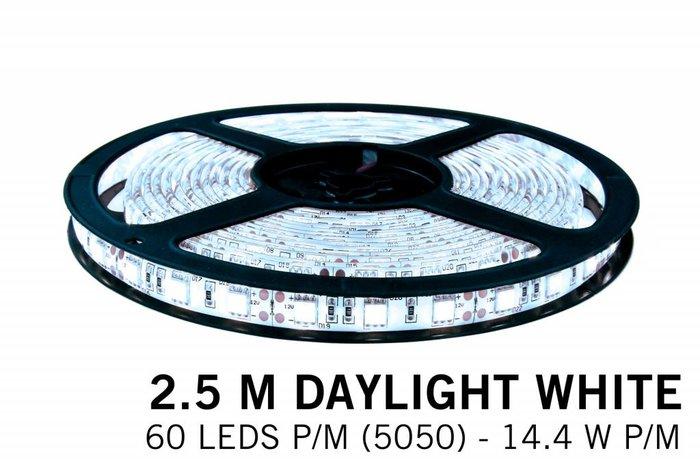 AppLamp Koel witte LED strip 60 leds p.m. - 2,5M - type 5050 - 12V - 14,4W/p.m