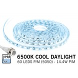 Waterdichte IP68 LED strip Koud Wit Daglicht, 300 leds, 12V,  5 of 1,5 meter