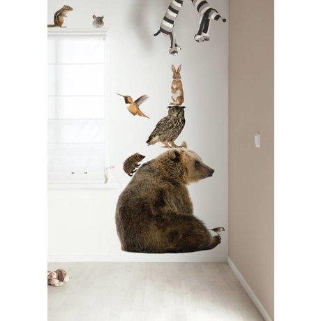 Kek Amsterdam Duvar Çıkartması XL Bear Seti Orman Arkadaşlar, çok renkli, 95x100cm