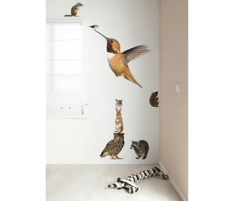 Kek Amsterdam Wall Decal XL Hummingbird Set Forest Friends, multicolour, 57x98cm