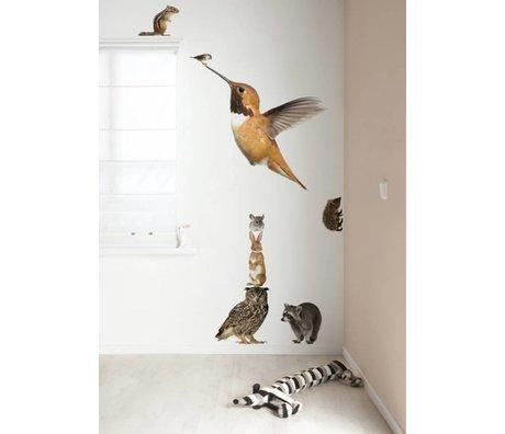 Kek Amsterdam Wandtattoo XL Kolibri Set Forest Friends, multicolour, 57x98cm