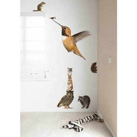 Kek Amsterdam Wall Decal XL Colibrí Set amigos del bosque, multicolor, 57x98cm