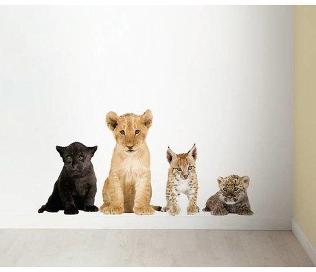 Kek Amsterdam Vægoverføringsbillede i sæt af 4 løve, sort panter, los, leopard, div. Mål