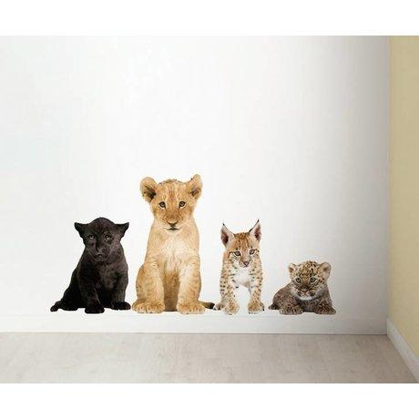 Kek Amsterdam Tatuajes de pared en el Conjunto de 4 león, pantera negro, lince, leopardo, div. Dimensiones